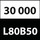 11 L80_30000_h.jpg